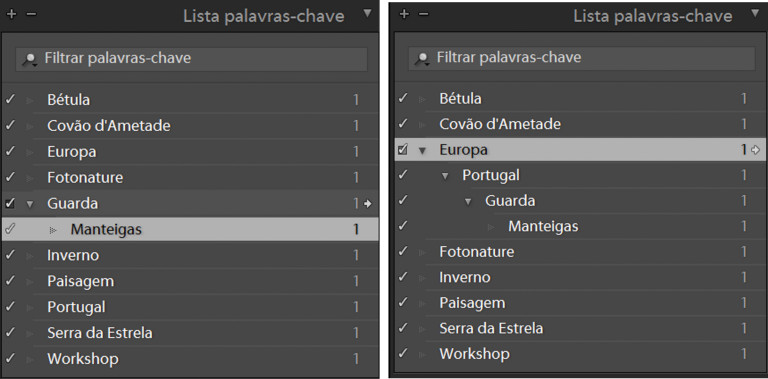 Criando a hierarquia: Europa > Portugal > Guarda > Manteigas